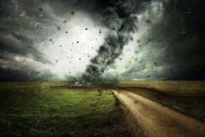 Read more about the article איך שפים נותנים בחזרה לקורבנות של סופות הוריקן