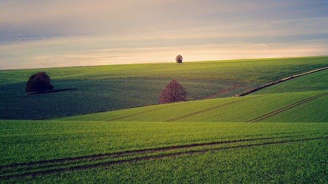 You are currently viewing חושבים לקנות קרקע? קודם קבלו תשובות לשאלות האלה